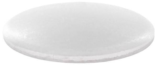 Klöpperböden | Rohrabschluss | Ø 76,1x2,5 mm | Stahl S235JR