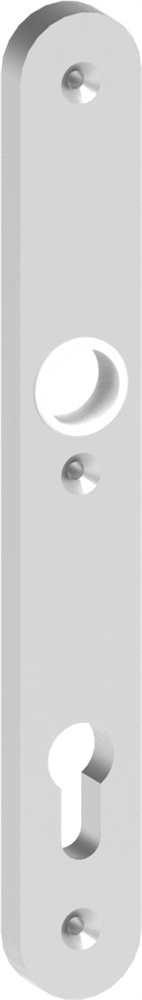 Alu-Zylinderlangschild | Maße: 30x230x10 mm | Aluminium EV1