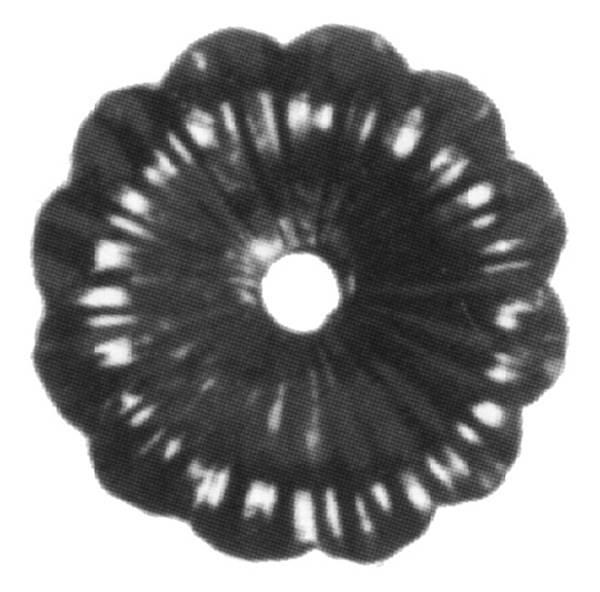 Rosette / Zierteil |  Ø 95x3 mm mit Lochung | Stahl (Roh) S235JR