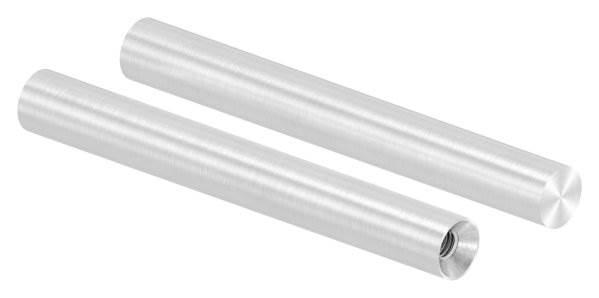 Stift | Maße: 100x12 mm | Innengewinde: M6x15 mm | zum Anschweißen | V2A