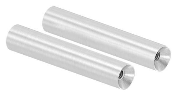 Stift | Maße: 75x14 mm | mit 2 Innengewinde: M6x15 mm | V2A