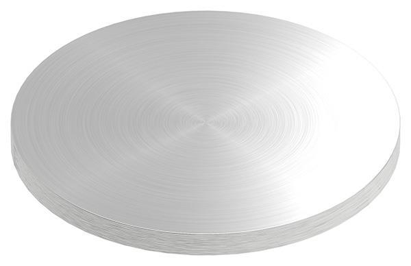 V2A Ronde Ø 120 x 8 mm